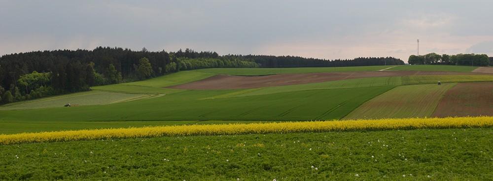 Bürgerinitiative Windenergie Böhmfeld